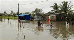 Ít nhất 177 người thương vong do lũ lụt tại Mozambique