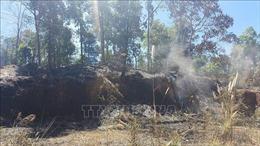 Sơn La liên tiếp xảy ra bảy vụ cháy rừng diện rộng