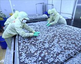 Thủy sản Việt Nam đứng trước cơ hội lớn tại thị trường Mỹ