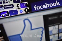 Bị xử phạt 10 triệu đồng vì đăng tin Facebook sai sự thật về lợn dịch bệnh