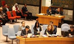Việt Nam hoan nghênh Hội đồng Bảo an thông qua Nghị quyết chống tài trợ khủng bố