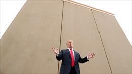 Chính quyền 20 bang của Mỹ ngăn chặn dự án xây dựng bức tường biên giới