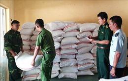 Mật phục, bắt giữ liên tiếp 2 vụ buôn lậu quy mô lớn ở An Giang