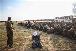 Iraq kết tội hơn 500 tay súng IS là người nước ngoài