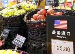 Đàm phán thương mại Mỹ - Trung chệch hướng ở cuối đường