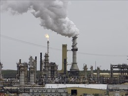 Giá dầu thế giới tăng hơn 2% sau các vụ tấn công tàu chở dầu ở vịnh Oman