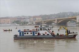 Vẫn còn 9 người mất tích trong vụ chìm thuyền trên sông Danube