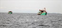 Kiên Giang chấn chỉnh nhiều tàu cá không có giấy phép khai thác thủy sản