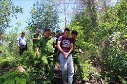 Bắt thêm một đối tượng tham gia hạ độc rừng thông ở Lâm Đồng