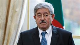 Algeria bắt giữ cựu thủ tướng dính líu tới tham nhũng