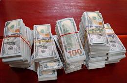 Thu giữ 470.000 USD do đối tượng nghi buôn lậu bỏ lại