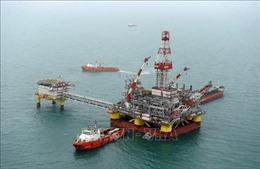 Giá dầu đi xuống trong phiên cuối tuần