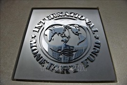 IMF hạ dự báo tăng trưởng toàn cầu năm 2019 xuống mức 3,2%