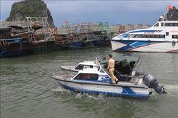 Quảng Ninh tạm ngừng cấp phép các phương tiện thủy ra khơi