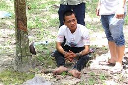 Bắt khẩn cấp đối tượng hiếp dâm, cướp tài sản tại Tây Ninh