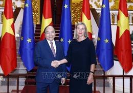 Thủ tướng: Quan hệ Việt Nam - EU có nhiều bước tiến tích cực, mang tầm chiến lược