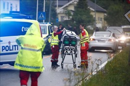 Nổ súng tại thánh đường Hồi giáo ở Na Uy, một người bị thương