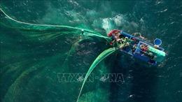 Vì một Việt Nam mạnh về biển, giàu từ biển - Bài 4: Chinh phục khát vọng trở thành quốc gia mạnh về biển
