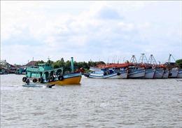 Ngành khai thác thủy sản tại Cà Mau đối mặt nhiều khó khăn