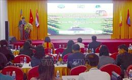 Chia sẻ kinh nghiệm khuyến nông giữa các quốc gia tiểu vùng sông Mê Kông