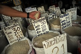 Thái Lan sẽ triển khai chương trình đảm bảo giá gạo