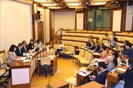 Phó Chủ tịch Quốc hội Phùng Quốc Hiển làm việc với các lãnh đạo Thượng viện Italy