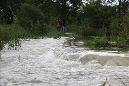 Đỉnh triều trên hệ thống sông Sài Gòn - Đồng Nai xác lập kỷ lục mới 1,77 m