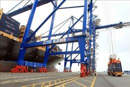 Thủ tướng phê duyệt chủ trương đầu tư 2 bến cảng container quốc tế Hải Phòng