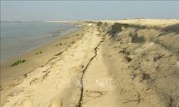 Đảo cát trở thành bãi chắn sóng tự nhiên cho bờ biển Hội An