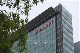 Mỹ chuẩn bị cấp phép cung cấp linh kiện cho Huawei