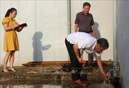 Lập đoàn kiểm tra, tìm nguyên nhân nước sinh hoạt có mùi lạ tại Hà Nội