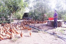 Tái cơ cấu nông nghiệp gắn với xây dựng nông thôn mới - Bài cuối: Phát triển 'Mỗi xã một sản phẩm'