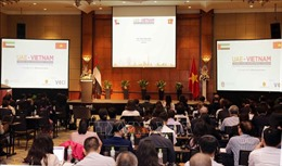 Diễn đàn doanh nghiệp Việt Nam - UAE