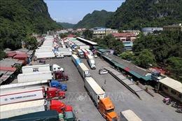 Giải quyết ùn ứ nông sản tại cửa khẩu Tân Thanh (Lạng Sơn)
