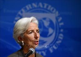 Cựu lãnh đạo IMF tiếp quản 'ghế nóng' tại ECB