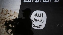 Thụy Sĩ truy bắt 11 nghi can tới các phần tử Hồi giáo cực đoan