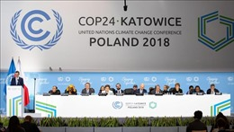 Tây Ban Nha là nước chủ nhà mới của COP 25
