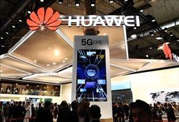 Mỹ xem xét gia hạn giấy phép hợp tác với Huawei