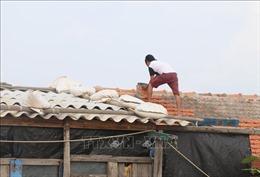 Đêm 9/11, vùng biển ngoài khơi từ Đà Nẵng đến Ninh Thuận có gió mạnh cấp 6-7
