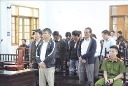 Tuyên án 12 đối tượng sai phạm trong quản lý đất rừng ở Gia Lai