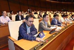 ILO hoan nghênh Việt Nam thông qua Bộ luật Lao động (sửa đổi)