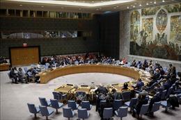 Hội đồng bảo an Liên hợp quốc tái khẳng định ủng hộ công ước cấm vũ khí hóa học