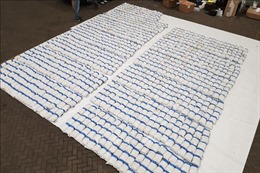 Các băng nhóm tội phạm 'bỏ túi' 13 tỷ USD nhờ buôn bán ma túy tại EU