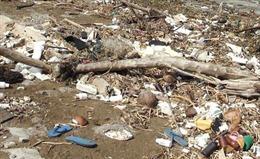 Hủy hoại đất có thể bị phạt đến 150 triệu đồng
