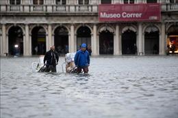 Hội nghị COP 25: Các nhà lãnh đạo cấp cao kêu gọi hành động khẩn cấp