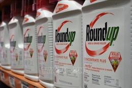 Tòa án Liên bang Australia xử vụ kiện tập thể đối với công ty Monsanto về thuốc diệt cỏ gây ung thư
