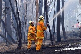 Lực lượng cứu hoả Australia vẫn đang chạy đua để diệt 'giặc lửa'