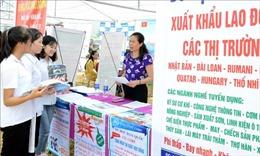 Rà soát số lao động Việt Nam đang làm việc tại Trung Đông - Bắc Phi