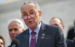 Ông Charles Schumer trở thành lãnh đạo phe đa số tại Thượng viện Mỹ