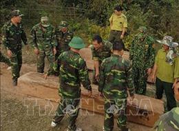 Thu giữ nhiều khối gỗ bị khai thác trái phép